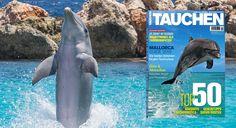 Top aktuell & begrenzt verfügbar! 12 Ausgaben Tauchen für effektiv 4,40€ durch einen 70,00€ Verrechnungsscheck. Zum Angebot: ➡ http://mdz.me/tauchen440  #tauchen   #tauchenmagazin  #schnorcheln #tauchsport #diving   #mallorca  #meer #tauchhotel #tauchguide  #dolphin #magazines   #deal   #deals   #dealoftheday  #abosgratis