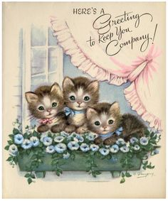 three kittens vintage card More Vintage Birthday Cards, Vintage Greeting Cards, Vintage Christmas Cards, Vintage Ephemera, Vintage Postcards, Christmas Greetings, Vintage Valentines, Vintage Pictures, Vintage Images