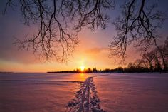By Matt Molloy - A lovely sunset to end a lovely day. My mom went out on her cross country skis for the first time this year, leaving these two trails in the snow. Winter Sunset, Ski Boots, Cross Country Skiing, Yesterday And Today, Beauty Photos, Outdoor Activities, The Great Outdoors, Trail, In This Moment