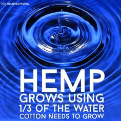 Hemp has potential to change the world.  The best way to make this happen is by making it part of your everyday.