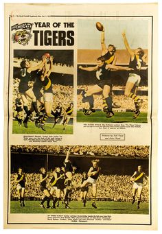 fa0e44ca3b8 Premierships of the Century - Official AFL Website fo the Richmond Football  Club Richmond Afl,