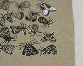 Moth - Original Gocco Print