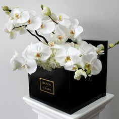 Square Box with Phalaenopsis Orchids | MDF