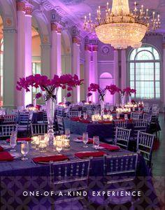 Iluminación de color púrpura para una boda.