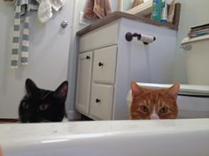 What happens when I take a bath