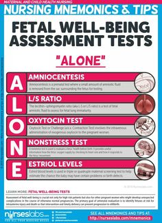 "Fetal Wellbeing Assessment Tests: ""ALONE"" Maternal and Child Health Nursing Mnemonics and Tips: nurs Newborn Nursing, Child Nursing, Nursing Career, Nursing Tips, Nursing Students, Ob Nursing, Maternity Nursing, Postpartum Nursing, Neonatal Nursing"