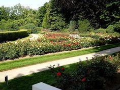 Der Rosengarten im Fort X