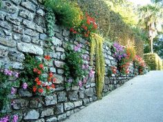 Gard viu, din fier forjat, caramida, piatra sau lemn; ce i-ar sta bine casei…