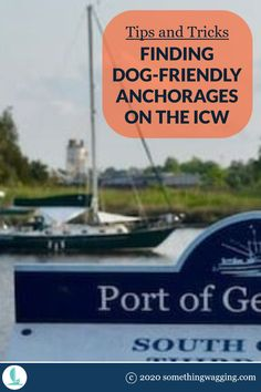 Heading down the ICW with your pup? Here's how to find dog-friendly anchorages along the way. Dogs On Boats, Great Places To Travel, Edisto Island, Living On A Boat, Dog List, Kinds Of Dogs, Pet Travel, Dog Friends