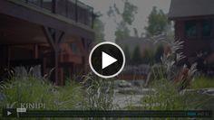Vidéo Lululemon Logo, Bucket, Buckets, Aquarius