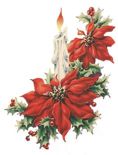 include image more - Christmas Poinsettia