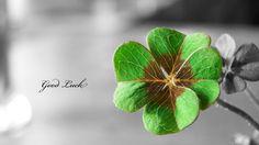 Good Luck [1920x1080]