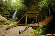 Dismals Canyon has several bridges, both natural and man-made, that'll help lead you through the area.