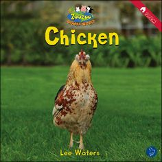 $4.25 Chicken: What is that chicken doing? This story shows you all the funny things a chicken does on the farm!