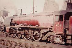 /by steventoogood53 #flickr #steam #engine