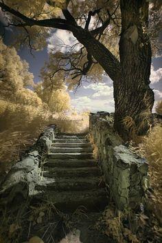 stairway........