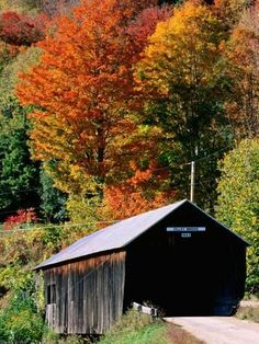 Photographic Print: Autumn Leaves Surrounding Cilley Covered Bridge, Vermont by John Elk III : 24x18in