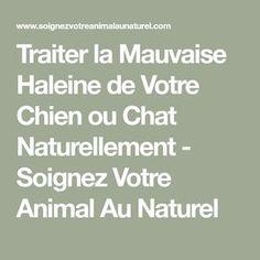 Traiter la Mauvaise Haleine de Votre Chien ou Chat Naturellement - Soignez Votre Animal Au Naturel
