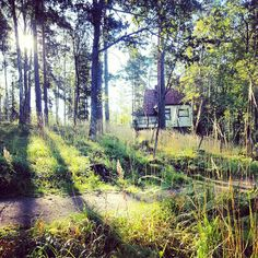 Morning sun in Ainola, Finland, home of composer Jean Sibelius.