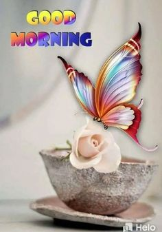 Good Morning sister and all,have a happy day God bless xxx take care and keep safe❤❤❤☀🍃 Good Morning Rose Gif, Good Morning Sister, Good Morning Happy, Good Morning Greetings, Morning Wish, Morning Qoutes, Funny Good Morning Quotes, Good Morning Beautiful Pictures, Good Morning Images
