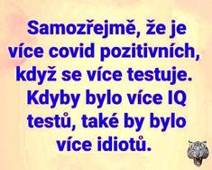 Samozřejmě, že je více covid pozitivních, když se více testuje. Kdyby bylo více IQ testů, také by bylo více idiotů. Carpe Diem, Motto, Frames, Jokes, Lol, Husky Jokes, Frame, Memes, Mottos