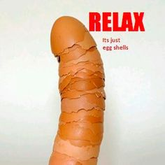 relax it's just egg shells! Get your mind out of the gutter lol! American Funny Videos, Funny Dog Videos, Funny Kids, The Funny, Funny Photos, Funny Images, Mind Test, Justin Bieber Jokes, Indian Funny