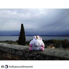 """#Repost @fluffyaroundtheworld  """"Hi to everyone! This is Castiglione del Lago in Umbria; I was near Trasimeno Lake and it had just stopped raining. Look at the beauty and the sublime of this place!"""" #fluffy #fluffyaroundtheworld #unicorn #licorne #peluche #art #kunst #trip #travel #travelling #voyage #trasimeno #trasimenolake #lake #umbria #castiglionedellago #italy #madeinitaly #europe #beauty #sublime #rain #afterrain #sky #cypress #romantic #picture #postcard"""