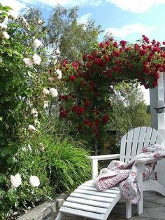 Ohhh!  I love this...♥... I can almost smell the roses and feel the warmth of the sun!