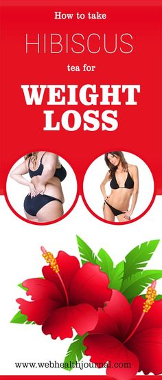 How to take Hibiscus Tea for Weight Loss ? | Posted By: NewHowToLoseBellyFat.com