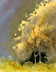 David Bellamy