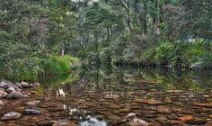 King Hut Creek We camped in the Victoria high country a few weekends ago - right next to this beautiful creek