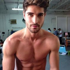 This guy is gorgous, where can I get one of these??