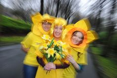 Show your company cares by registering at www.cancer.ie/ourcompanycares. Daffodil Day takes place on Friday March 22nd Daffodil Day, Daffodils, Cancer, March, Friday, Mac