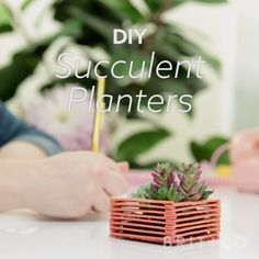 Make your own triangle succulent planters with this green home decor video DIY tutorial that consists of only popsicle sticks + glue.