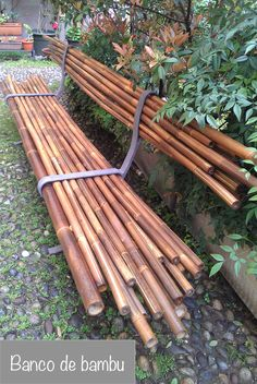 Some Easy DIY Bamboo Projects - No matter you are looking to make some large structure or small computer cases, bamboo will be your natural choice because it is lightweight, strong a. Bamboo Bamboo, Bamboo House, Bamboo Garden, Bamboo Fence, Bamboo Furniture, Garden Furniture, Cheap Furniture, Discount Furniture, Office Furniture
