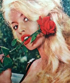 Brigitte Bardot with a red rose in her mouth
