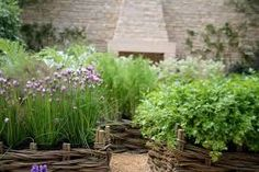Image result for garden tree supports