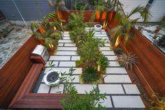 Landscaping — SQUARED ROOT LANDSCAPING & DESIGN Garden Landscaping, Landscaping Design, Wisteria Plant, Living In San Francisco, Real Estate Sales, Succulents Garden, Portfolio Design, Garden Inspiration, Curb Appeal