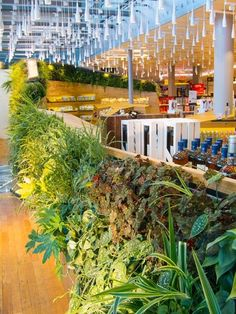 This vertical garden in Oslo airport was finished in April 2012. It can be found in the Heinemann Duty Free Shop designed by Snøhetta.