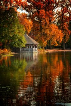 Autumn at Prospect Park, Brooklyn, New York (photo by Nathan Brisk on Fall Pictures, Fall Photos, Belle Image Nature, Beautiful Places, Beautiful Pictures, Amazing Photos, Autumn Scenes, Belle Photo, Beautiful Landscapes