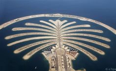 Palm Islands from #Dubai