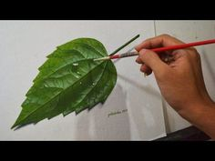 How to Paint Leaves: Acrylic Painting Techniques: Creating Texture with Glazes - YouTube
