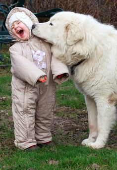 12 cute dogs with children. Separated here 12 photos of cute dogs with children for you to marvel at the purity, innocence and pure love. Dogs And Kids, Big Dogs, Animals For Kids, Animals And Pets, Baby Animals, Funny Animals, Cute Animals, Funny Pets, Love My Dog