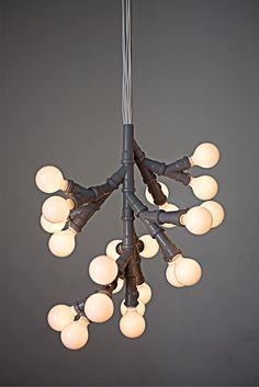 Bunch Of Bulbs by KiBiSi