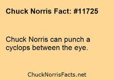 Chuck Norris can punch a cyclops between the eye. ...   ChuckNorrisFacts.net