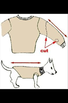 DIY dog sweater for small dogs // oh man.  i foresee a future of 1,000 sweaters for Pickles.