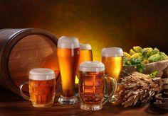 download beer wallpaper free