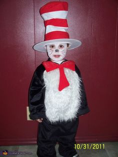 -Cat in the Hat - Homemade costumes for boys