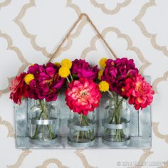 Spruce up your space with some brightly colored flowers!