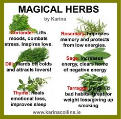 See what you can do with some common herbs!ie/intuition-tests/magic-herbs. Healing Herbs, Medicinal Plants, Natural Healing, Holistic Healing, Natural Health Remedies, Herbal Remedies, Home Remedies, Herbal Cure, Holistic Remedies